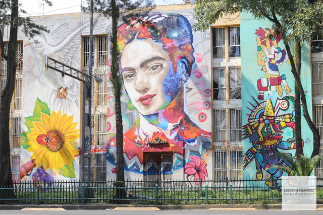 CDMX, Mexico City, Street Art - Frida Kahlo