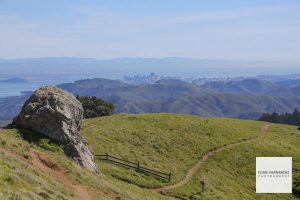 Mount Tamalpais Hiking Trail View, Marin County