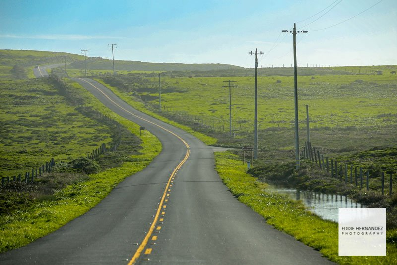 Marin County, Tomales Bay Backroad, Point Reyes National Seashore