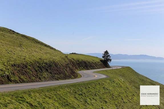 Mount Tamalpais Curvy Roads of Marin County