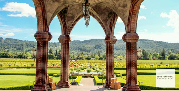 Ledson Winery, Napa Valley Views